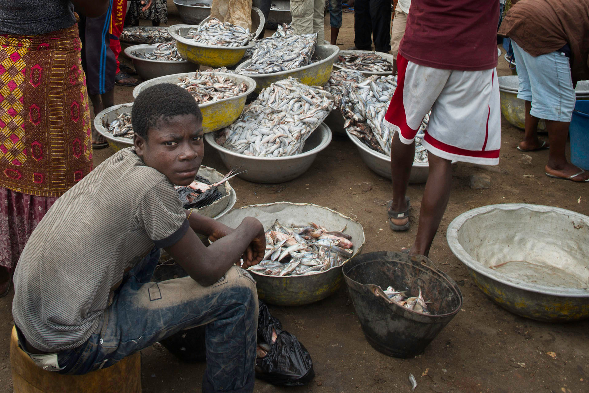 Boy Selling Fish