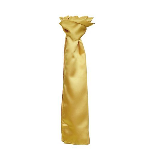 Satin Scarf [120 x 25cm] (Gold) (Art.-Nr. CA006539)