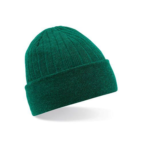 Thinsulate™ Beanie [One Size] (Bottle Green) (Art.-Nr. CA148434)