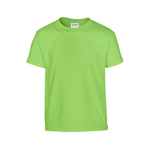 Heavy Cotton™ Youth T- Shirt [XS (140/152)] (lime) (Art.-Nr. CA806064)