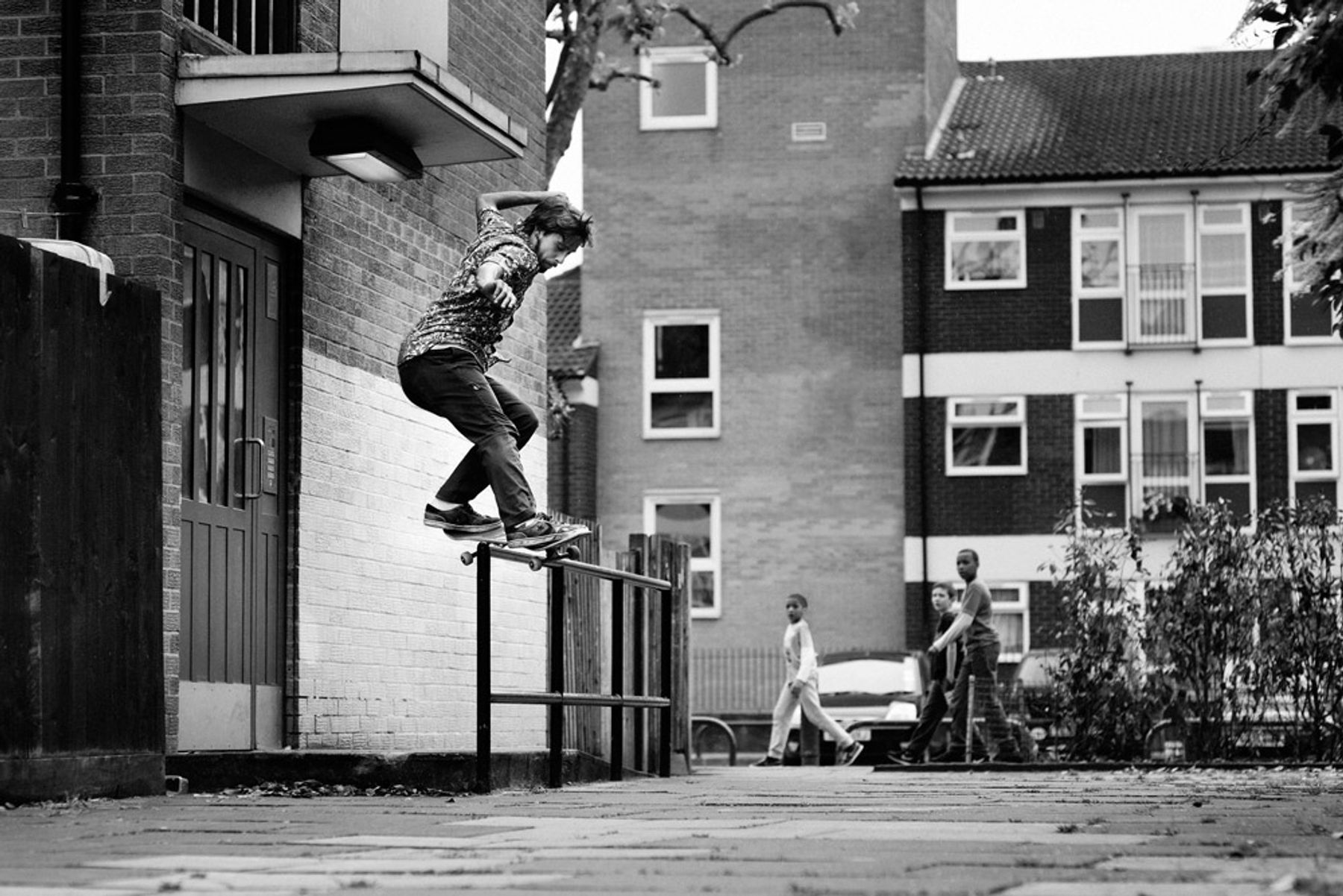 Harry_Front_Feeble_GREY_copyright_Lex_Kembery