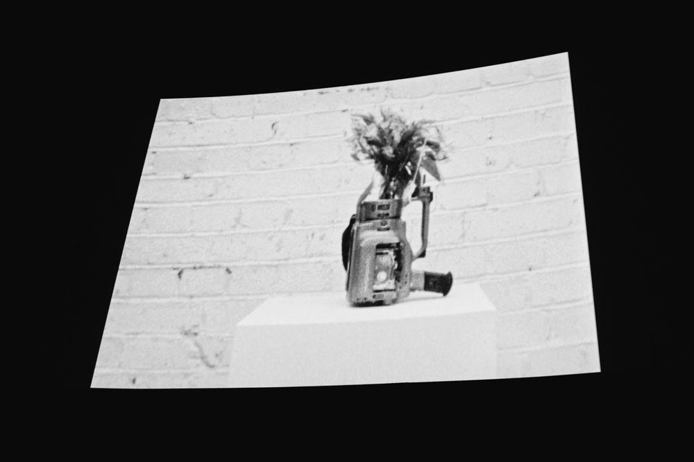 _IHC8141e-Isle-Vase-Film-Premiere-Prince-Charles-Cinema-London-November-2015-Photographer-Maksim-Kalanep