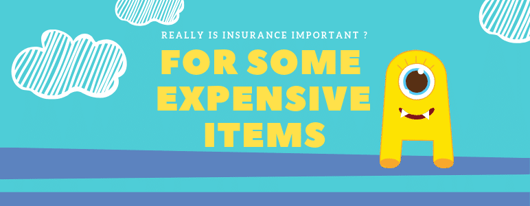 Insurance on expensive items