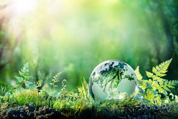 crystal-globe-on-moss-gettyimages-943875205