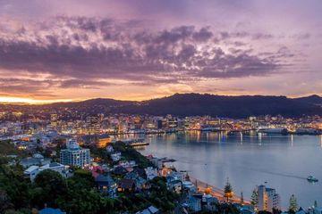 Wellington Business Events lead