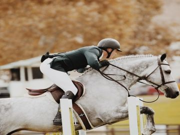 FEI on bringing the industry closer to equestrian sports