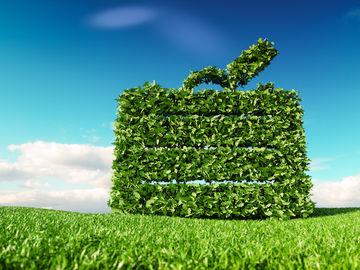 sustainable-travel-program