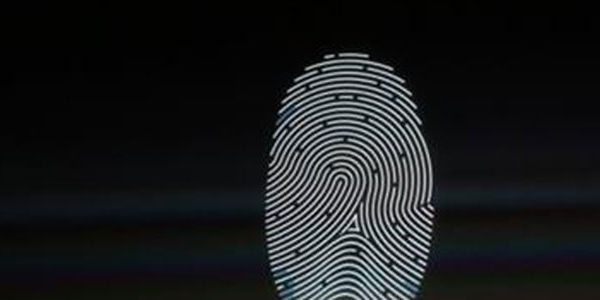 Japan to test fingerprint-based ID and payments for foreign visitors