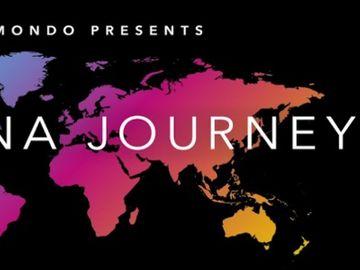 Momondo's DNA journey video goes viral