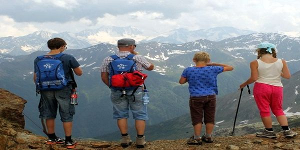The ins and outs of search for family trips