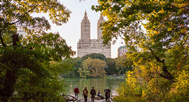 NYC Central Park view