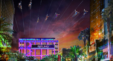 Fly LINQ - Las Vegas