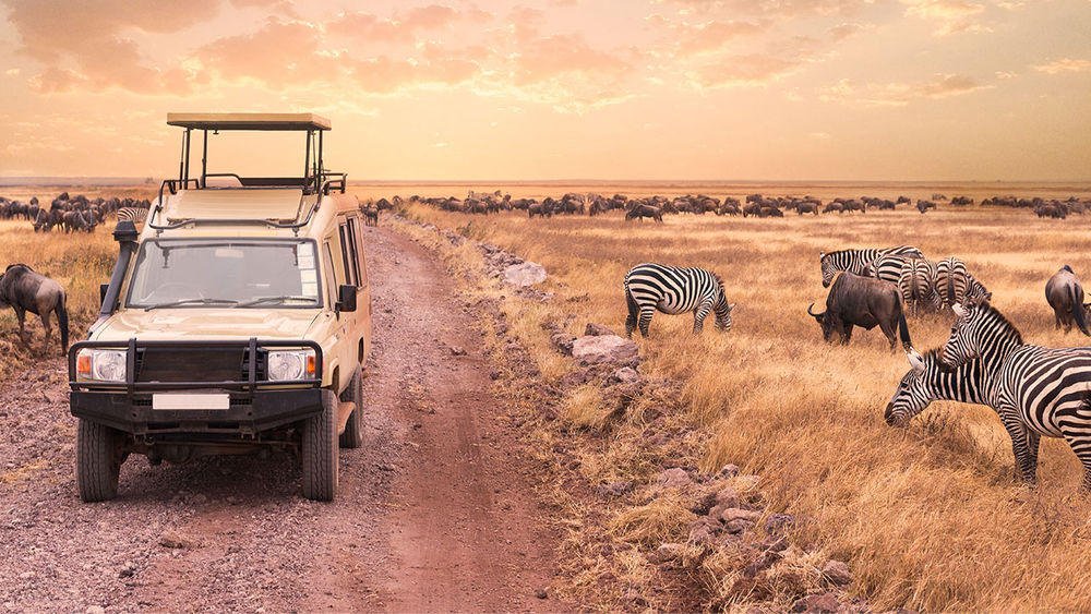 Fam: South Africa, Tanzania or Kenya With African Travel, Inc.