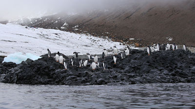 A Sea Kayaking Adventure in Antarctica's Weddell Sea
