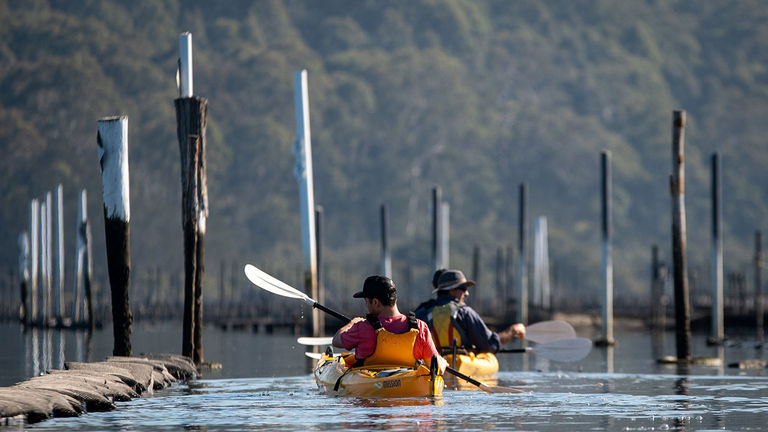 Region X leads kayaking tours through Clyde River.