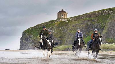 Sheans Horse Farm Northern Ireland