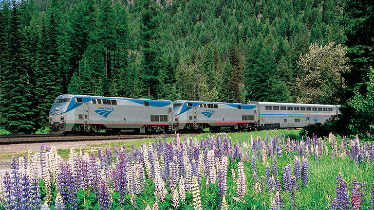 Amtrak, which expanded its pet program in March, is an alternative option for clients traveling with animals.