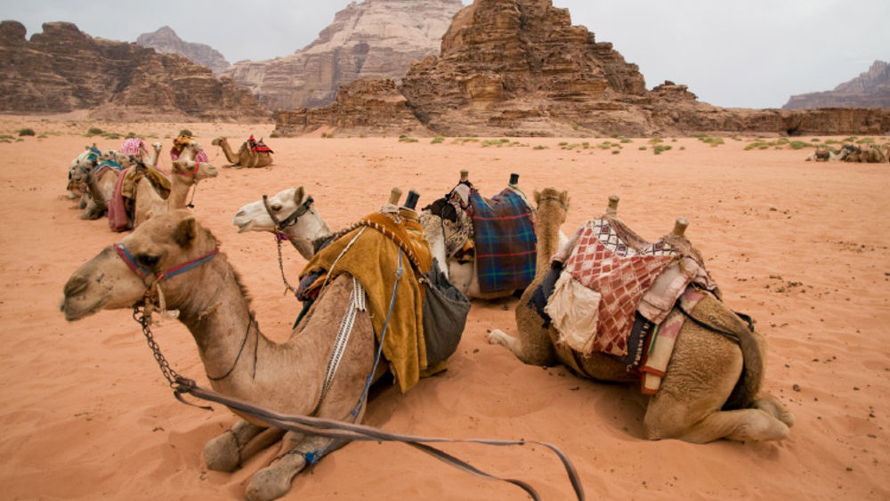 Travel to Jordan With Meaning