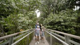 Sentosa on its way to becoming carbon neutral by 2030