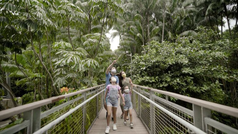 Some 200 business, including hotels, dining establishments, attractions, and the marina club and golf club are joining the island's carbon-neutral plan.