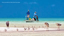 """塞舌尔旅游局:在""""新常态""""下专注于恢复旅游运营"""