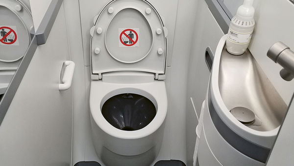 Boeing's Spacewall lavatory on an American 737 Max 8.