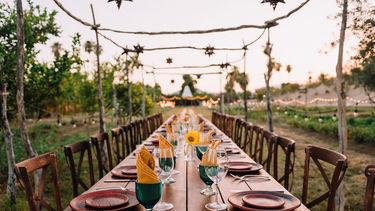 Los Cabos NEW Farm to Table