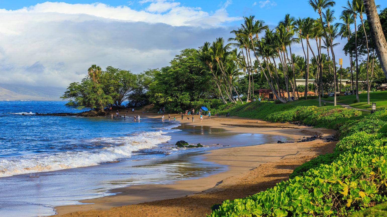 Wailea Beach Hawaii [Credit: Elena_Suvorova/Shutterstock.com]
