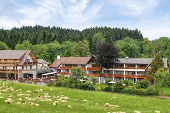Hotel Gruener Wald