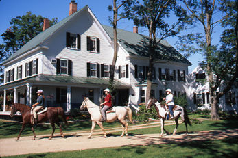 Farm by the River Bed & Breakfast with Stables