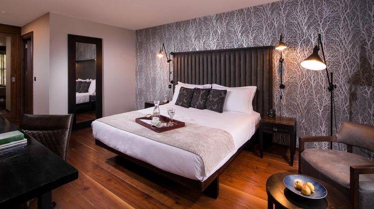 The Twelve Hotel Room