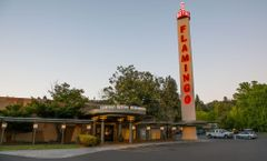 Flamingo Resort and Spa