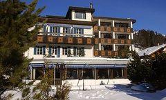 Hotel Spinne