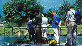 Fishtail Lodge Recreation