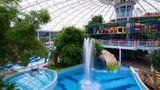 Aquaticum Termal and Wellness Hotel Pool