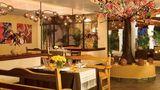 Dreams Palm Beach Punta Cana Restaurant