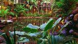 Daintree Eco Lodge & Spa Exterior