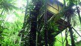 Daintree Eco Lodge & Spa Suite