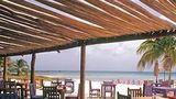 Divi Aruba Phoenix Beach Resort Restaurant