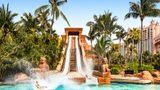 Atlantis, Paradise Island Resort Pool