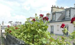 Hotel Vendome Saint Germain
