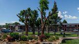 Best Western Alamosa Inn Exterior