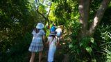 Castaway Island Resort Recreation