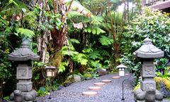 Lotus Garden Cottages B&B