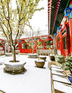 Beijing Courtyards