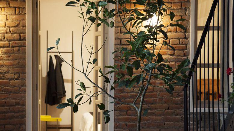 "Hotel Carlota Exterior. Images powered by <a href=""http://www.leonardo.com"" target=""_blank"" rel=""noopener"">Leonardo</a>."