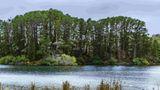 Sebel Creswick Forest Resort Other