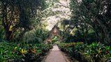 Hacienda Temozon, Luxury Collection Other
