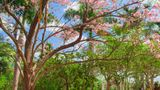 Hacienda San Jose, Luxury Collection Recreation