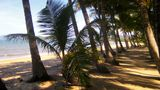 Pullman Palm Cove Sea Temple Resort/Spa Other